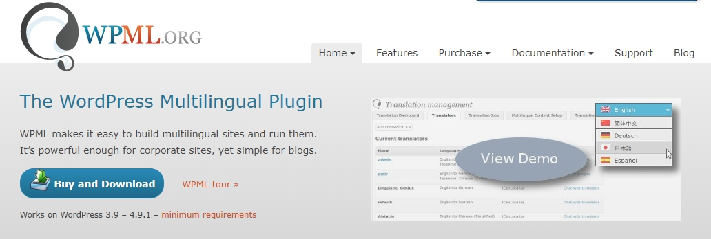 wpml-Translation Plugins for Website